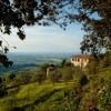 Azienda Agricola Pietroso