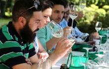 06 - Alla scoperta dei vini bianchi