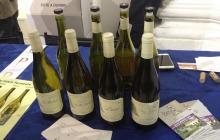 03 - I bianchi di Vergé a Pesaro con That's Wine