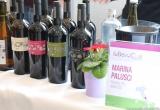 24 - L'Abruzzo con Marina Palusci